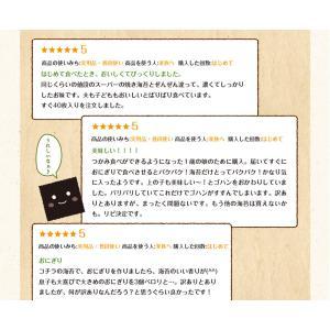海苔/ 訳あり 有明産上級焼海苔 40枚 ネコ...の詳細画像4