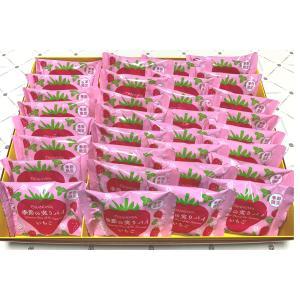 オランダ家 季節の実りパイ 苺 32個入 千葉 ギフト お菓子 詰め合わせ おもたせ|chiba-orandaya