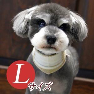 犬用アクセサリー/バンダナ大・3枚パック(フリース・ベージュ)クリックポスト対応商|chic-alors