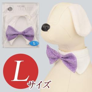 犬用アクセサリー/ボウタイ大(ドット柄 バイオレット)クリックポスト対応商品 布製ハンドメイド|chic-alors