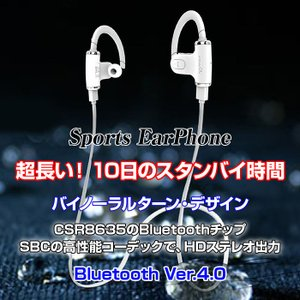 スポーツイヤホン イヤホンヘッドセット イヤーフック ヘッドホン Bluetooth イヤホン ワイヤレス ノイズキャンセリング CHI-S530|chic