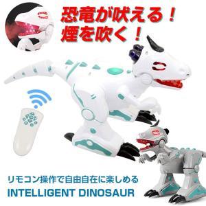 恐竜 怪獣 おもちゃ ラジコン ロボット 動く 歩く 発声 リモコン操作 電池駆動 玩具 4ch クリスマス 誕生日 子供 こども プレゼント CHI-FK501KL ポイント2倍♪|chic