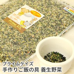 手作りご飯の具 養生野菜
