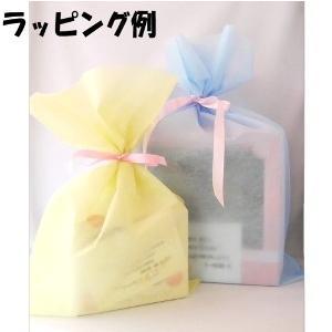 ぬいぐるみ電報 ウェディングドール スヌーピー&ベル 洋装 Mサイズ ぬいぐるみ|chiko-mori|07