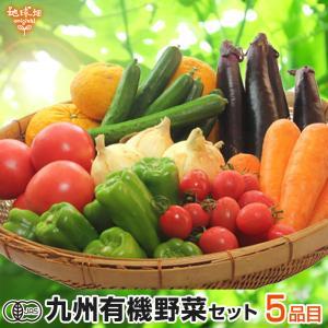 野菜セット 有機野菜おまかせセット 5品目 九州野菜 鹿児島県 有機栽培 送料無料 詰め合わせ