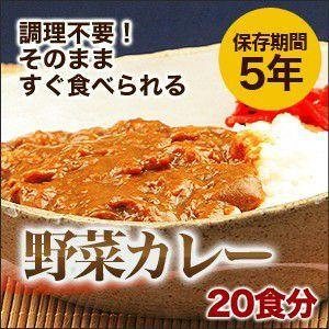 非常食 保存食 5年保存 カレーライス 20食セット 調理・水不要|chikyuya