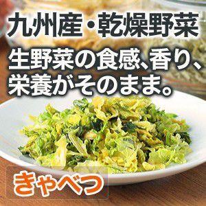 乾燥野菜 キャベツ 国産野菜  保存野菜|chikyuya
