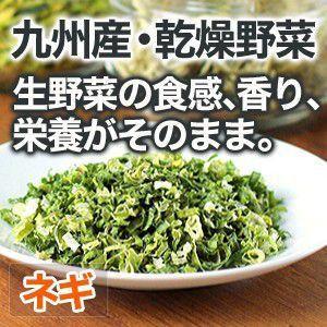乾燥野菜 ネギ 国産野菜  保存野菜|chikyuya