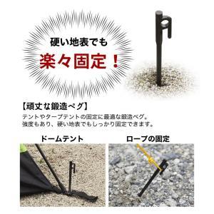 鍛造ペグ 鍛造ペグ/テント用 ペグ  20cm 4本 専用ハンマー セット 専用ケース CAMPING BUDDY|chikyuya|02
