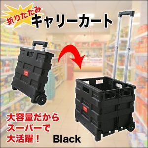 キャリーカート キャリーカート/折りたたみ 軽量 コンパクト 買い物 アウトドア|chikyuya|02