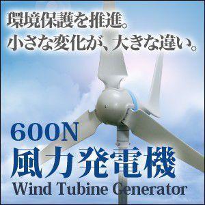 風力発電機  風力発電機/セット 小型風力発電機 家庭用 600W|chikyuya