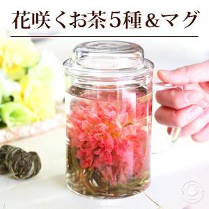 ギフト いやしセット 工芸茶 5種 耐熱 ガラス マグカップ 450ml 蓋付 茶こし カーネーショ...