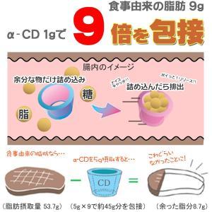 ダイエット食品 ノンメタファイバー5g×10包 難消化性デキストリン サプリメント 粉末 水溶性食物繊維|chinatea|02