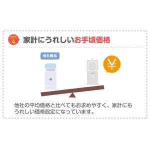 送料無料 アンジュスマイル メッシュ式 超音波 ネブライザー 家庭用 吸引器 吸入器|chinavi|07