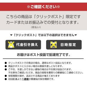 代引・日時指定不可  スレンダートーン対応 EMS互換交換パッド 3枚×1セット|chinavi|02