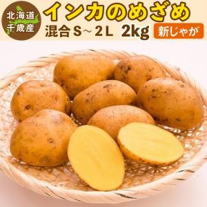 インカのめざめ 新じゃが 2kg S〜2Lサイズ混合 北海道 千歳産  じゃがいも ジャガイモ 送料無料 訳あり|chispo