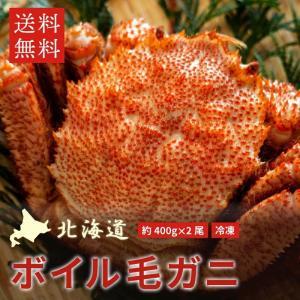 北海道産 毛ガニ 400g前後 2尾 (計800g前後)ボイル 冷凍 送料無料 毛蟹 カニ 蟹 かに 2杯 2匹|chispo