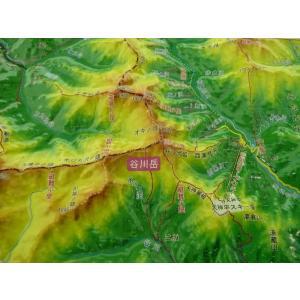 谷川岳(たにがわだけ)は群馬・新潟の県境にある三国山脈の山である。日本百名山のひとつ。周囲の万太郎山...