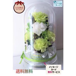 黄緑 ピスタチオカラー カーネーション プリザーブドフラワー グリーンカーネ ドームアレンジ|chloris-flower