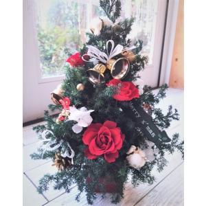 クリスマスツリー プリザーブドフラワーツリー |chloris-flower