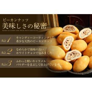 お菓子 食べ物 洋菓子 チョコレート ギフト ナッツチョコレート ピーカンナッツ/ラララ ピーカン18g×10袋 サロンドロワイヤル|chocola|03