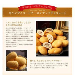 お菓子 食べ物 洋菓子 チョコレート ギフト ナッツチョコレート ピーカンナッツ/ラララ ピーカン18g×10袋 サロンドロワイヤル|chocola|05
