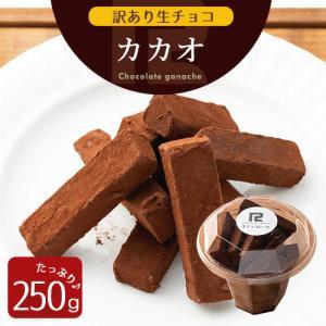 訳あり 生チョコレート カカオ 250g  切れ端 アウトレット お試し スイーツ お菓子 プチ ギ...