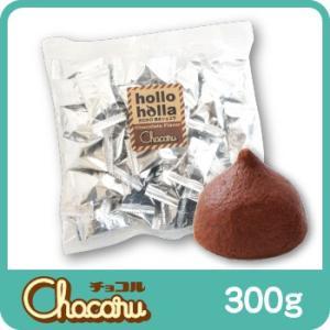 ホロホロ焼きショコラ hollo holla 〜チョコレート〜 300g