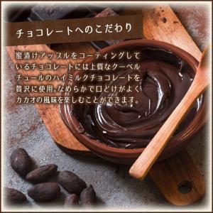 【送料無料】アップルチョコスタンドパック150g 1ケース(12袋入り)|chocoru|04