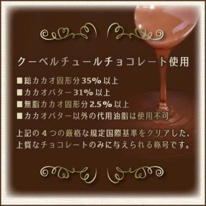 【送料無料】アップルチョコスタンドパック150g 1ケース(12袋入り)|chocoru|05