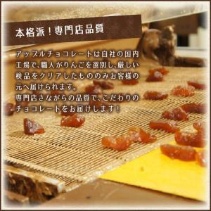 【送料無料】アップルチョコスタンドパック150g 1ケース(12袋入り)|chocoru|06