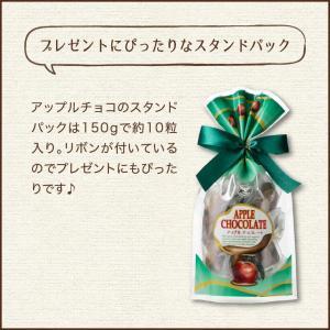 【送料無料】アップルチョコスタンドパック150g 1ケース(12袋入り)|chocoru|07