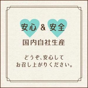【送料無料】アップルチョコスタンドパック150g 1ケース(12袋入り)|chocoru|08