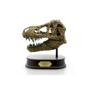 DINOSAUR SKULL&JAWS MODEL  恐竜 ティラノサウルス スカル&ジョーズモデル FDS-651 (70551)|choiceippinkanselect