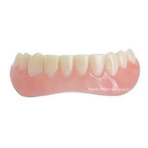 インスタントスマイル 下歯用|choicestzakka