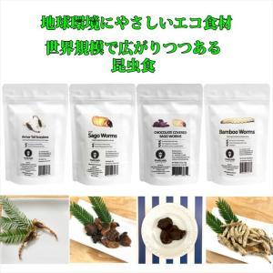 JRユニーク 昆虫食入門 食用 食べる虫 /アーマーテイルスコーピオン/サゴワーム/チョコレートサゴワーム/バンブーワーム|choiyaru