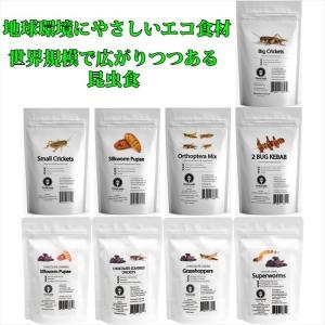 JRユニーク 昆虫食入門 食用 食べる虫 /コオロギ/シルクワーム/バッタ/スーパーワーム/グラスホッパー|choiyaru