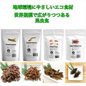 JRユニーク 昆虫食入門 食用 食べる虫 /グラスホッパー/スーパーワーム/昆虫ミックス/タガメ|choiyaru