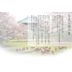 ワンポイント(鹿とさくら)の刺繍入りペットボトルカバー(500mL)(サーモスカバー)|chokucobin|02