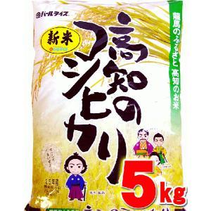 こしひかり 5キロ 高知県産 令和2年産 精米 お米 こめ 白米 ご飯 ごはん コシヒカリ ギフト プレゼント 産地直送 銀シャリ chokuhan