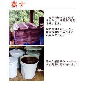 碁石茶 ごいし茶 土佐の乳酸菌発酵茶 まとめ買いお得用セット(約50グラム×2袋) 高知県大豊町産 chokuhan 06