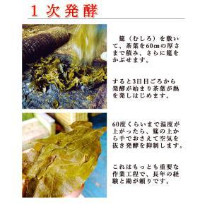 碁石茶 ごいし茶 土佐の乳酸菌発酵茶 まとめ買いお得用セット(約50グラム×2袋) 高知県大豊町産 chokuhan 07