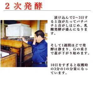 碁石茶 ごいし茶 土佐の乳酸菌発酵茶 まとめ買いお得用セット(約50グラム×2袋) 高知県大豊町産 chokuhan 09