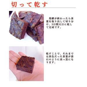 碁石茶 ごいし茶 土佐の乳酸菌発酵茶 まとめ買いお得用セット(約50グラム×2袋) 高知県大豊町産 chokuhan 10