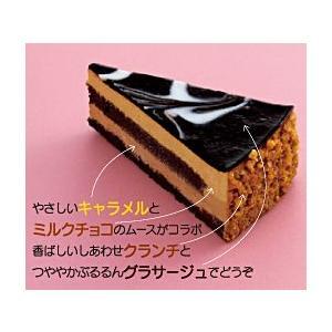 ★ヌーベルショコラ 6個入 約70グラム/個 業務店・プロ御用達★冷凍ケーキ(HMY) chokuhan