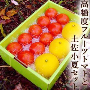 母の日手書カード・包装付  高糖度フルーツトマトと土佐小夏のギフトセット ラッピング付き フルーツト...