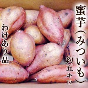 「訳あり」蜜芋(みついも・安納芋品種) 約5kg 焼き芋専用...