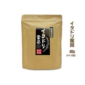 イタドリ葉茶 高知産 48グラム ティーバッグ4g×12包 高知産イタドリ葉使用 いたどり 虎杖 ポリフェノール ノンカフェイン スカンポ たしっぽ knotweed|chokuhan