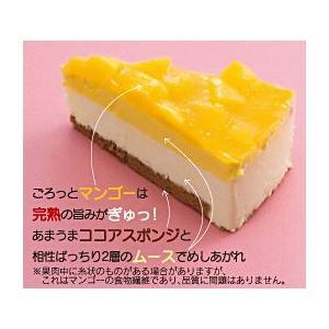 ★マンゴーレアチーズケーキ 6個入 約75グラム/個 業務店・プロ御用達★冷凍ケーキ(HMY) chokuhan