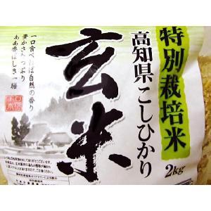 土佐の「コシヒカリ玄米」 約2キロ 特別栽培米 コシヒカリ100% chokuhan